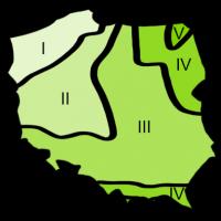 SFREFY-KLIATYCZNE-new-green